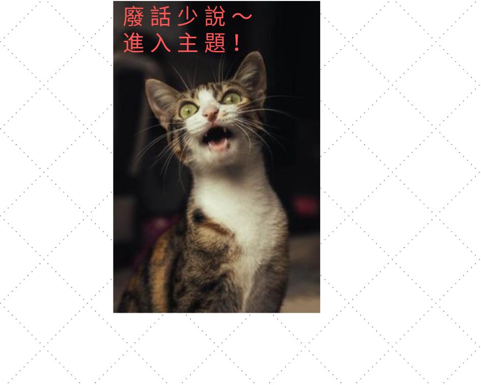 貓不能吃什麼