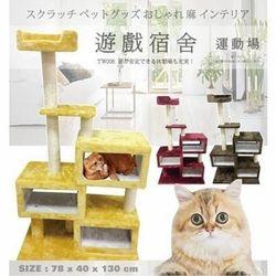 貓跳台推薦 貓咪宿舍