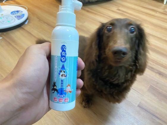 狗狗潔牙牙膏