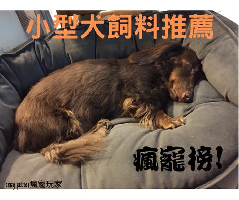 【瘋寵榜】狗奴13年十大小型犬飼料推薦|2019整理精華版