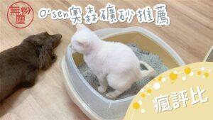 【瘋評比】O'SEN奧森礦型貓砂推薦|無粉塵礦砂~五貓試用評價(1/25~1/31開團囉!)