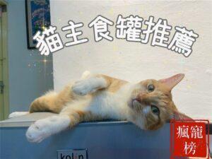 【2021瘋寵榜】貓奴六年十四款貓主食罐推薦 五貓真實體驗分享