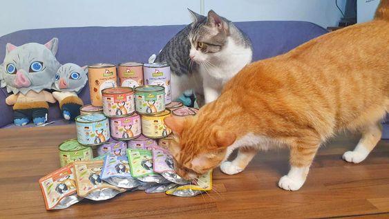 葛蕾特貓罐頭