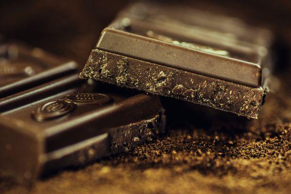 狗吃巧克力中毒