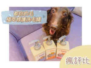 都你的毛植萃修護寵物洗毛精開箱|賓狗試用評價【瘋評比】