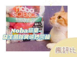 Noba貓皇益生菌除臭礦砂開箱 五貓試用評價【瘋評比】